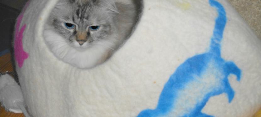 Blest Sunday: Mer-Kittens