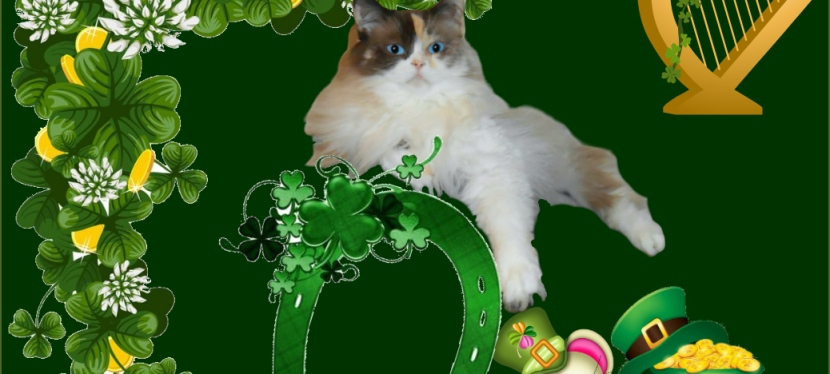 Blest Sunday: Luck of the Irish