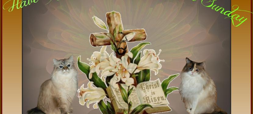 Blest Sunday: Resurrection SundayBlessings