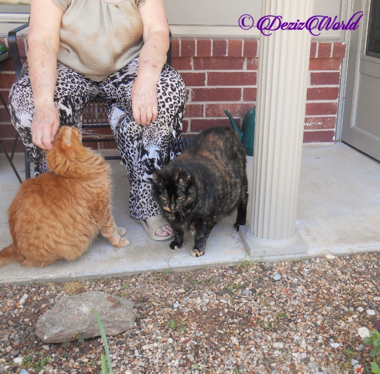 Jubal and Spook outside with Mrs. N