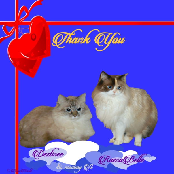 Dezi and Raena thank y9ou card