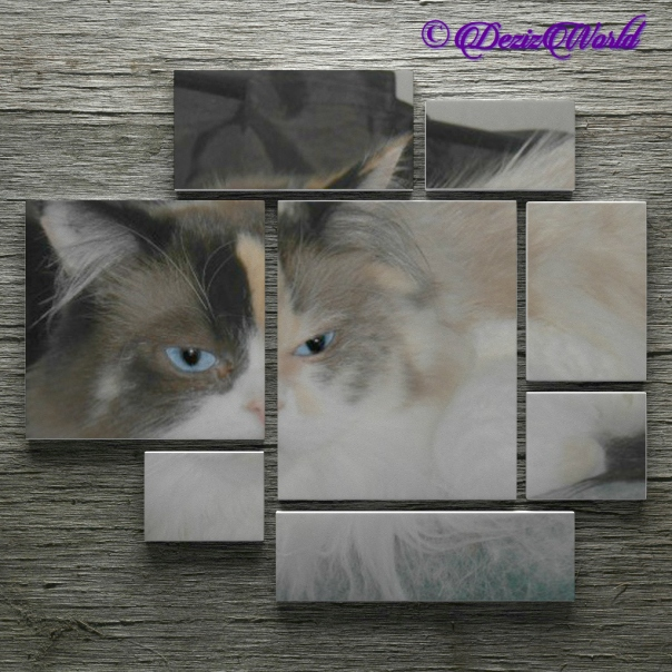 Raena in a wall frame