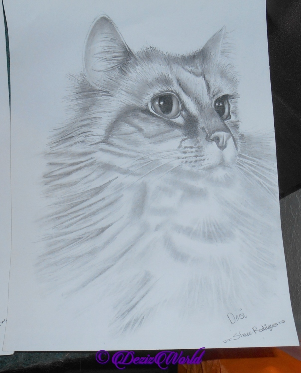 Pencil drawing of Dezi