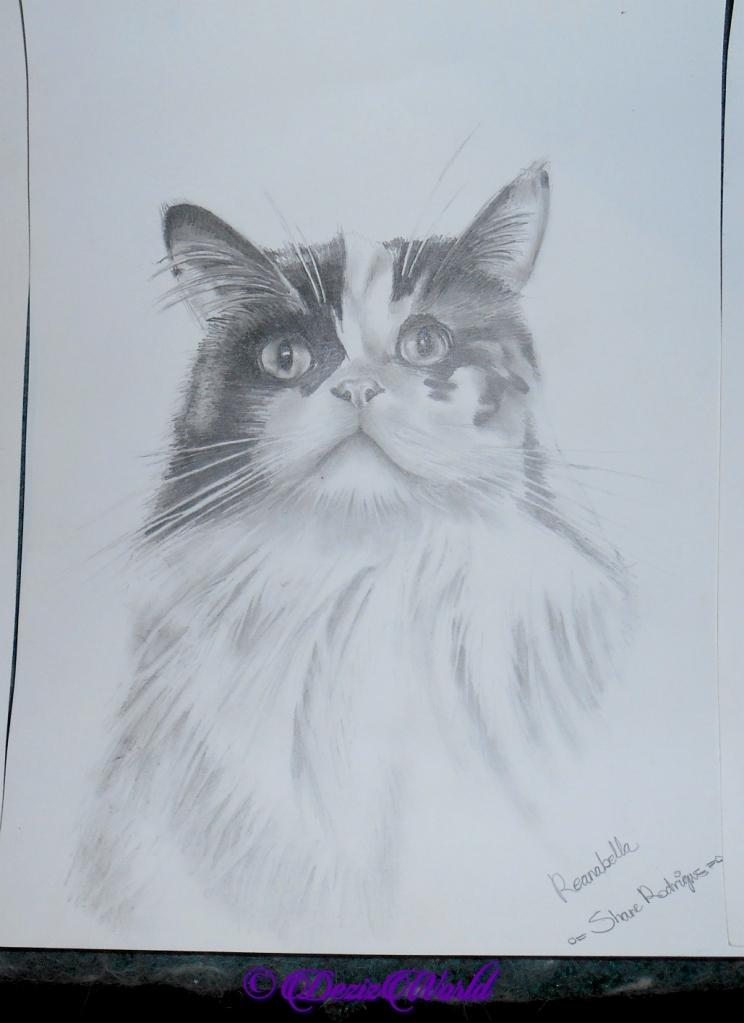 Pencil drawing of Raena