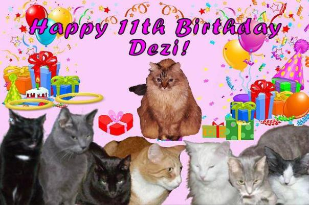 Dezi birthday card from Timmy, Toby, Rumpy, Buttons, Fitz, Einstein, and Buddy