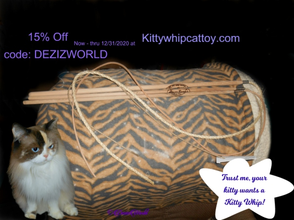 Raena with the Kitty Whip Coupon code