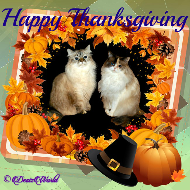 Dezi and Raena in a Thanksgiving Frame