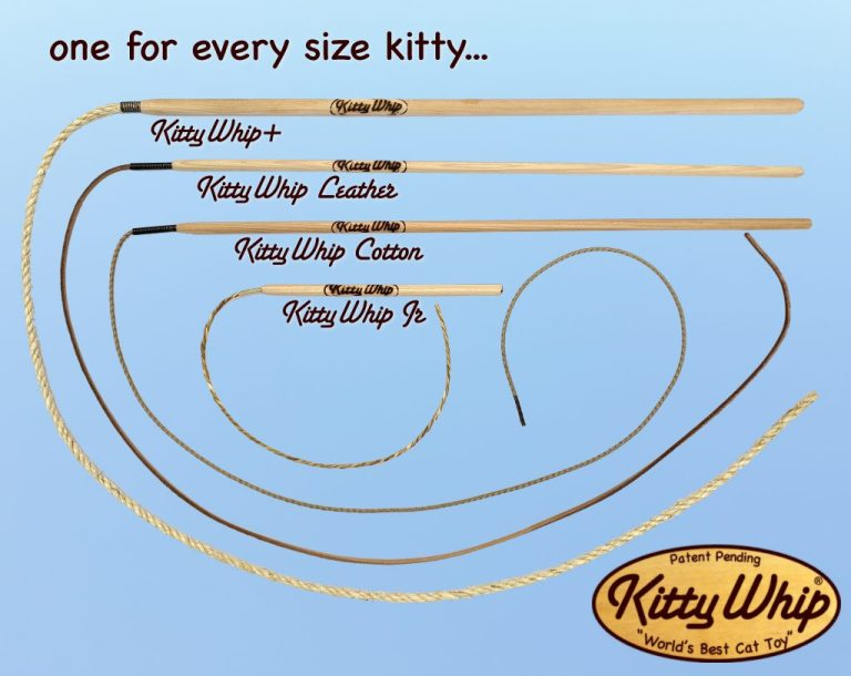 Kitty Whip Cat Toys