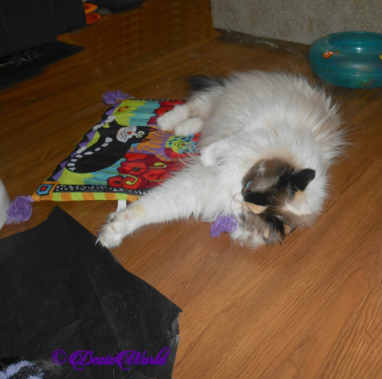 Raena lays on her new boogie mat from Vonda