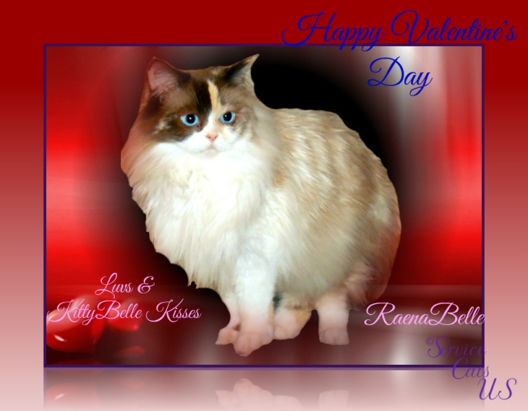 Raena's valentine's day wishes