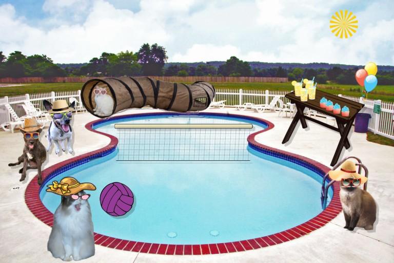 Ranea's pool party arrivals