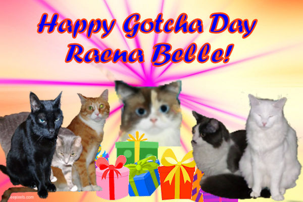 Raena gotchaday card from Timmy and family