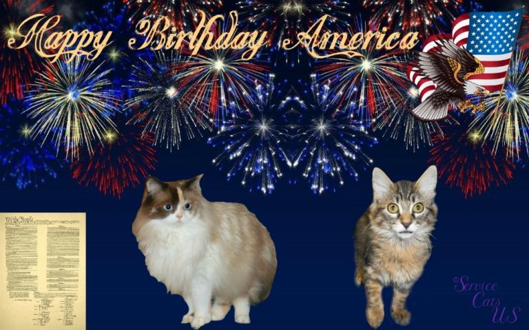 Raena and Zebby in patriotic frame, Happy birthday America