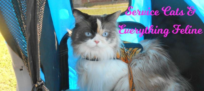 Service Cats: Harnessing Kitty Has MultipleBenefits