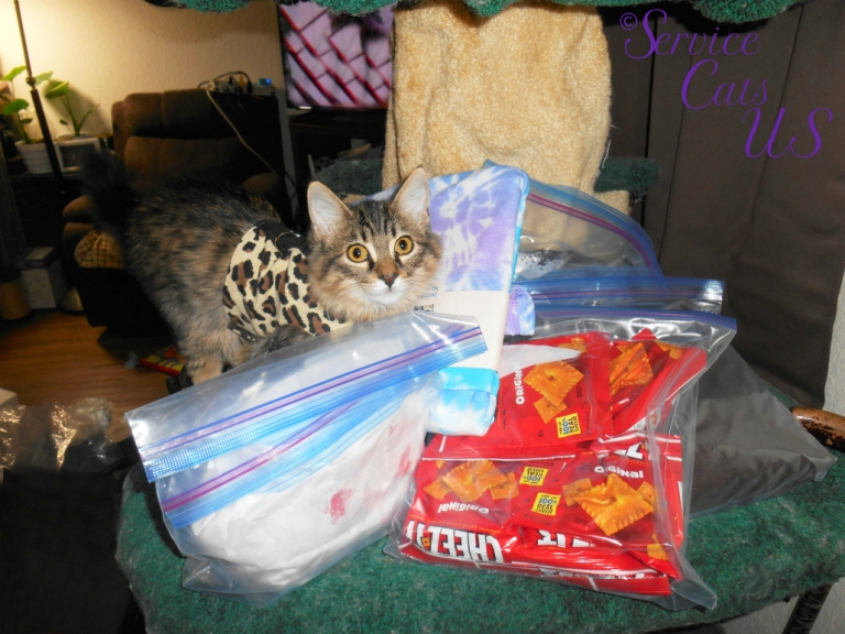 Zebby poses with gifts from cindy
