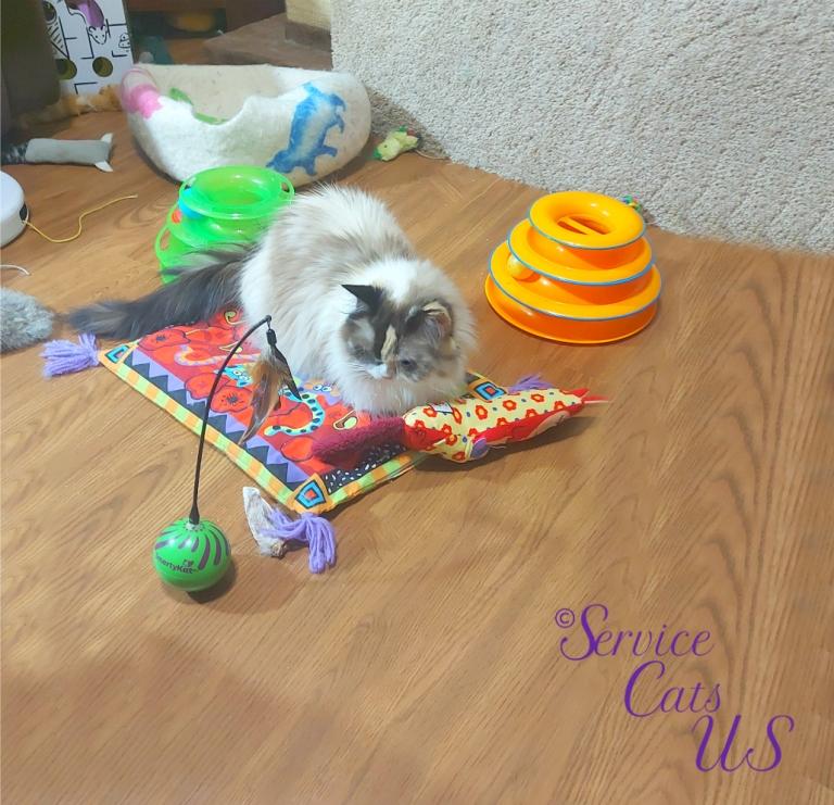 Raena lays with her new toy from awnty Vonda